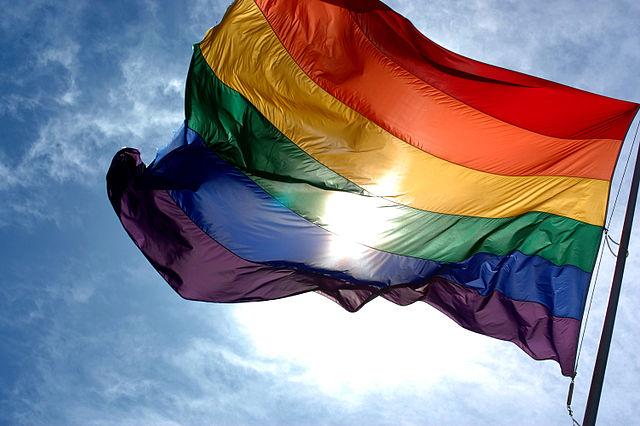 Rainbow Flag | Ludovic Bertron